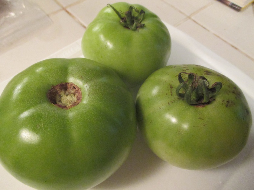 Food from Fiction 4: Sipsey's Fried Green Tomatoes
