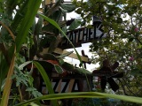 Satchel's Pizza, GainesvilleFL