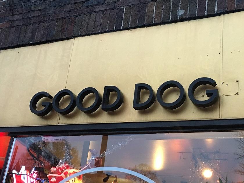Good Dog, Chattanooga TN (taketwo)